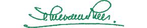 logo fondazione sanvenero