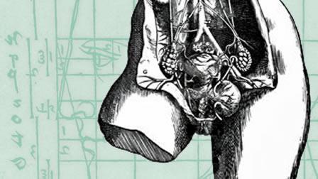 slide_dissezione_femminile
